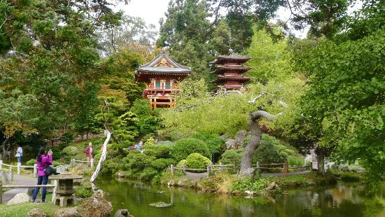 Japanese Tea Garden, Golden Gate Park- source tripadvisor