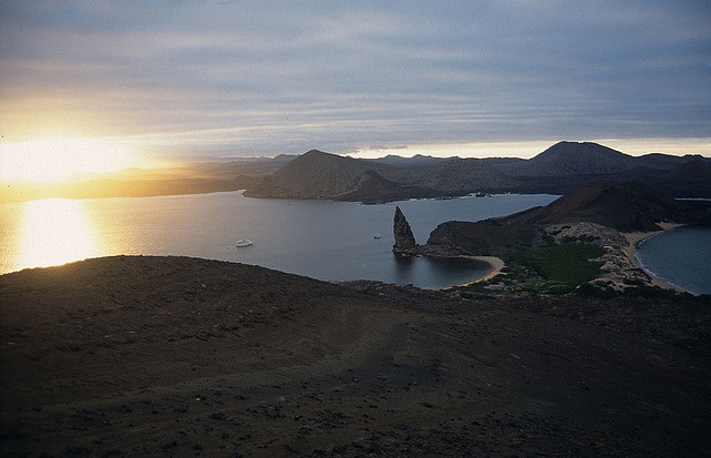 The volcanic nature of the islands means many rare and prehistoric animals can be found here (Photo: Flickr, Derek Keats)