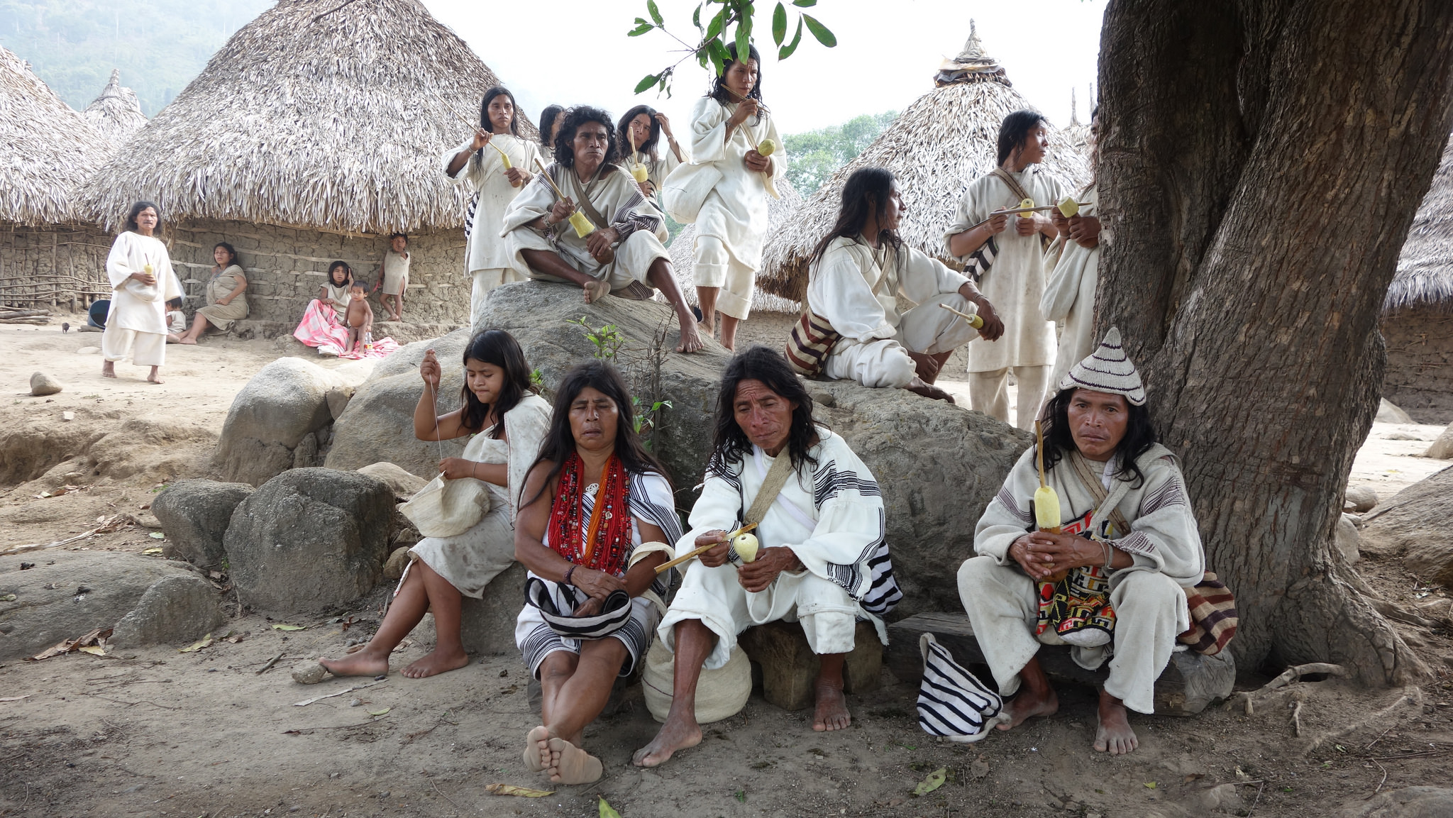 indigenous people in colombia The wayuu people are the largest indigenous tribe in northern colombia and  northwest venezuela in colombia, they live in la guajira.